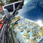 baking cookies in a car