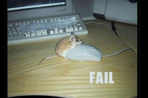 Loving the mouse