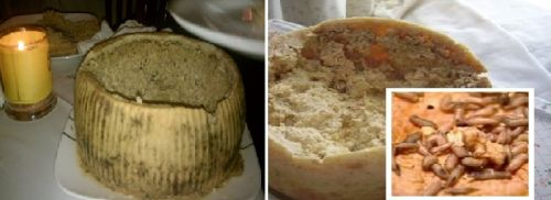 Casu Marzu