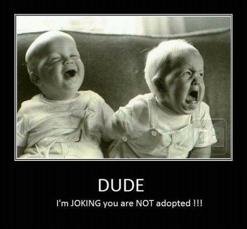 Not adopted
