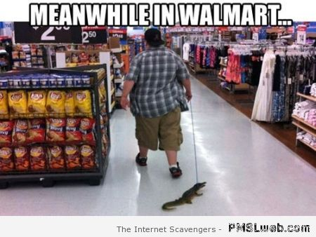 Meanwhile in walmart a man walking an alligator