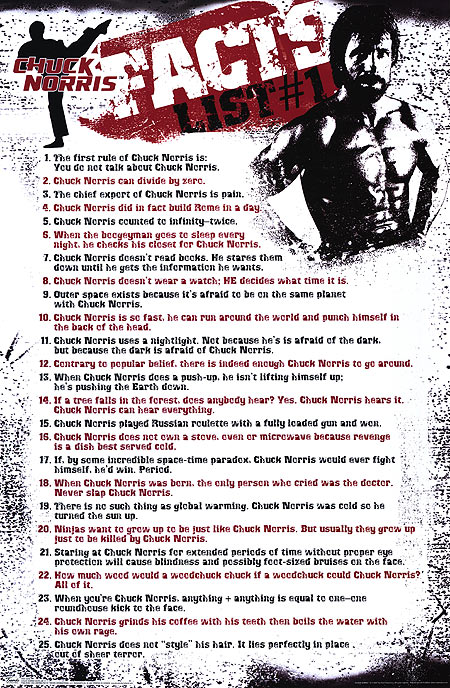 chuck norris facts sheet