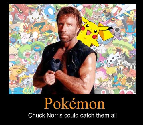 chuck norris the pokemon catcher