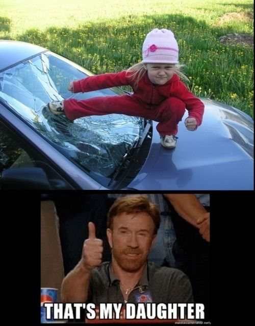 chuck norris 's daughter breaks windshield