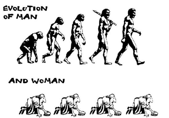 male evolution opposed to woman evolution
