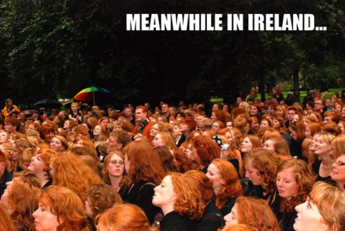Meanwhile Ireland