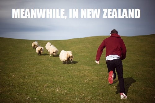Meanwhile NZ