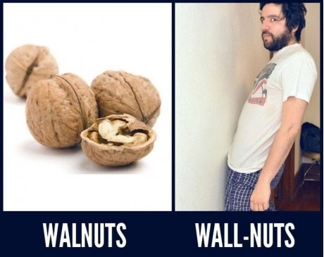 difference between walnuts and wallnuts