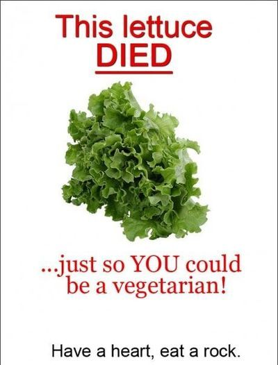 this lettuce died so you could be vegetarian
