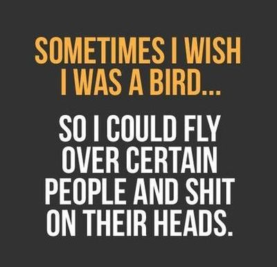 i wish i was a bird to shit on people