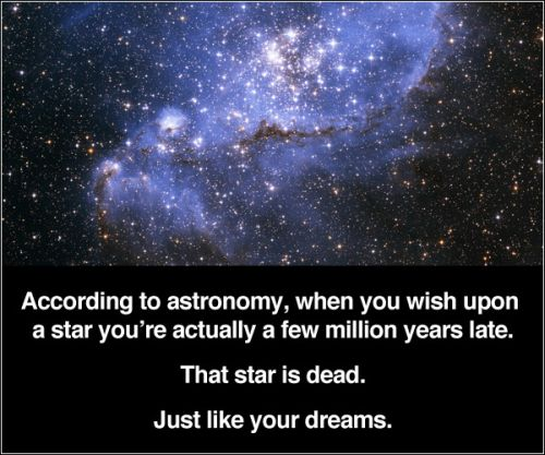 the star is dead just like your dream