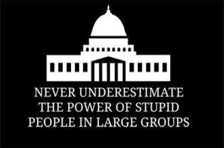 never underestimate the power of stupid people in large groups politics
