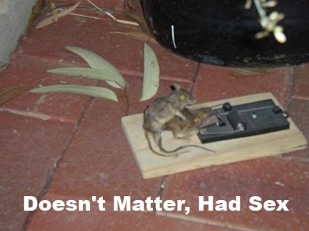 mouse says doesn t matter had s