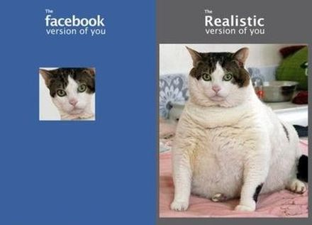 fake versus realistic facebook profile picture funny