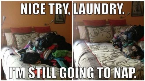 nice try laundry but I'm still going for a nap