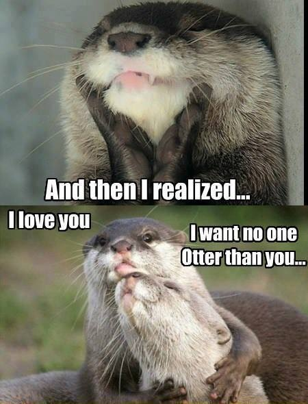 I want no one otter than you