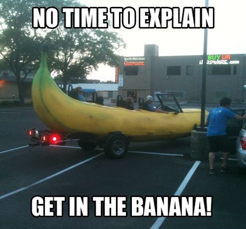 No time to explain get into the banana