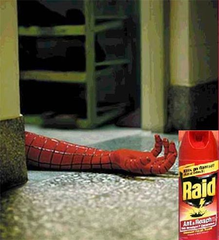 Raid Spiderman
