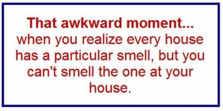 that awkward moment house smell