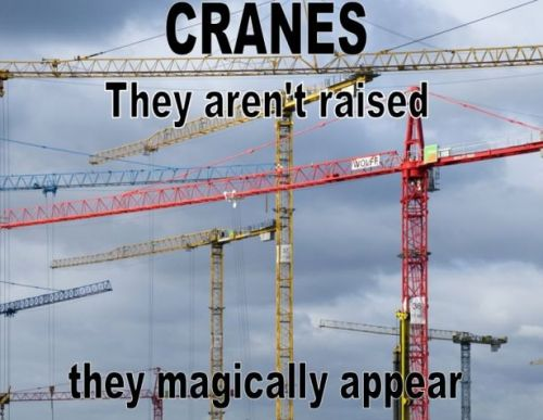 cranes they aren't raised they magically appear