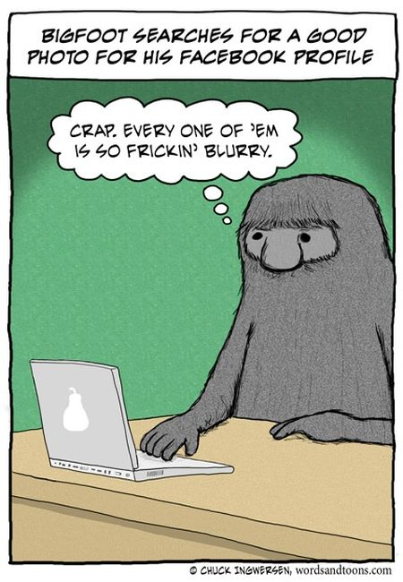 Bigfoot searches for good facebook profile picture funny
