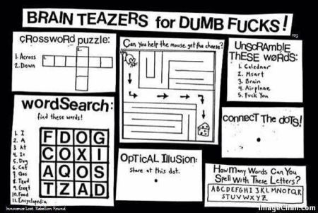brain teasers for dumbs