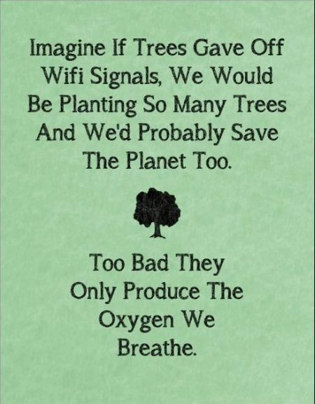 Imagine if trees gave off wifi signals funny