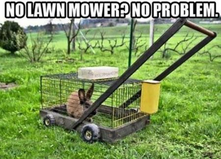 No lawn mower no problem funny picture