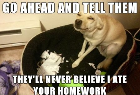 go ahead and tell them, they'll never believe I ate your homework