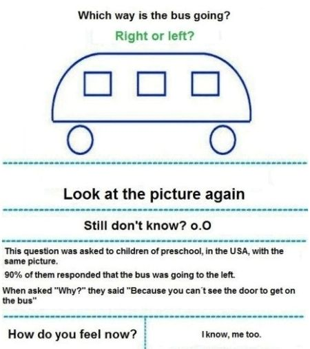 which way the bus is going smart kids