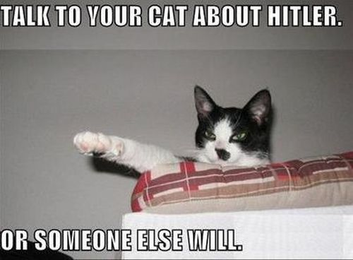 talk to your cat about Hitler funny