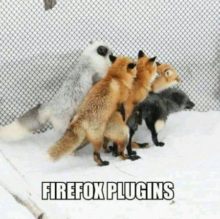 firefox plugins funny