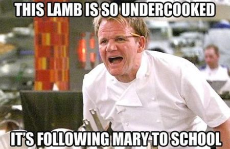 this lamb is so undercooked ramsay funny