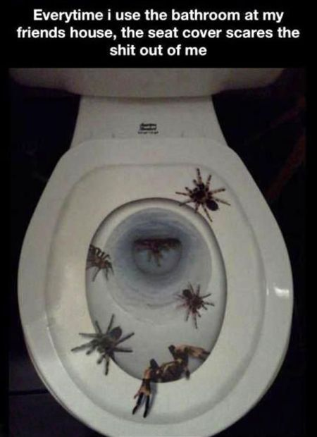scary toilet seat funny