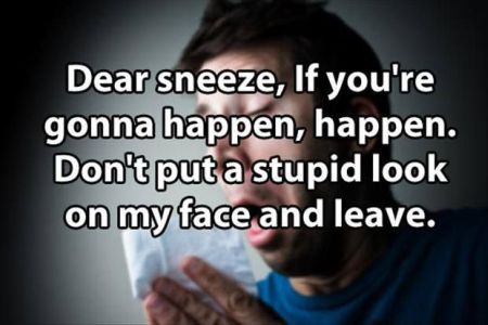 dear sneeze if you're gonna happen