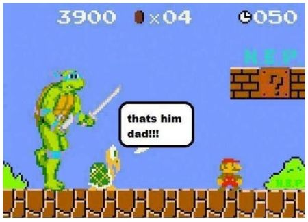 Mario Bros and mutant teenage ninja turtle funny