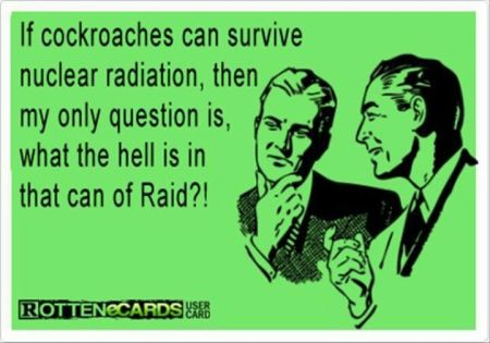 what the hell is in the can of raid - funny ecard
