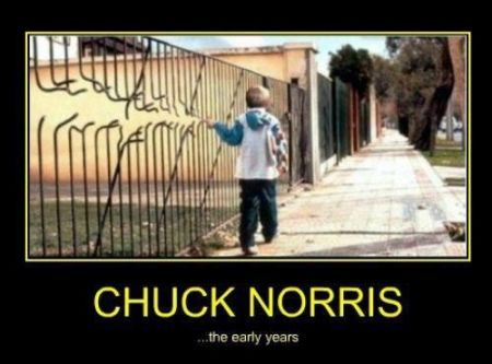 chuck Norris the early years demotivational