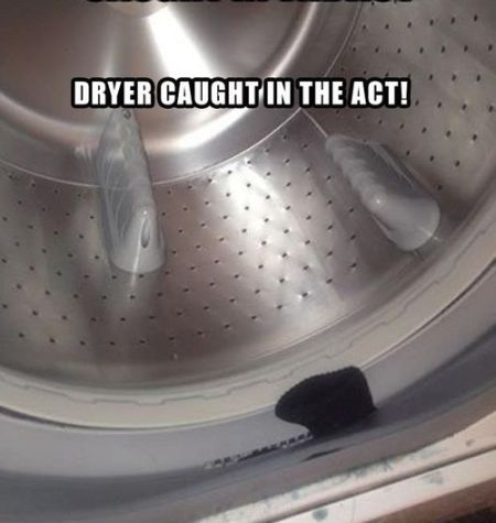 dryer caught in the act funny picture