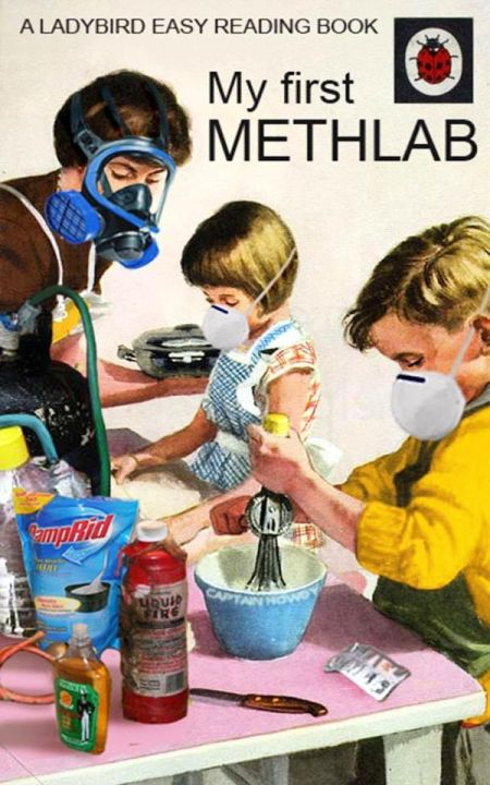my first methlab ladybird book funny