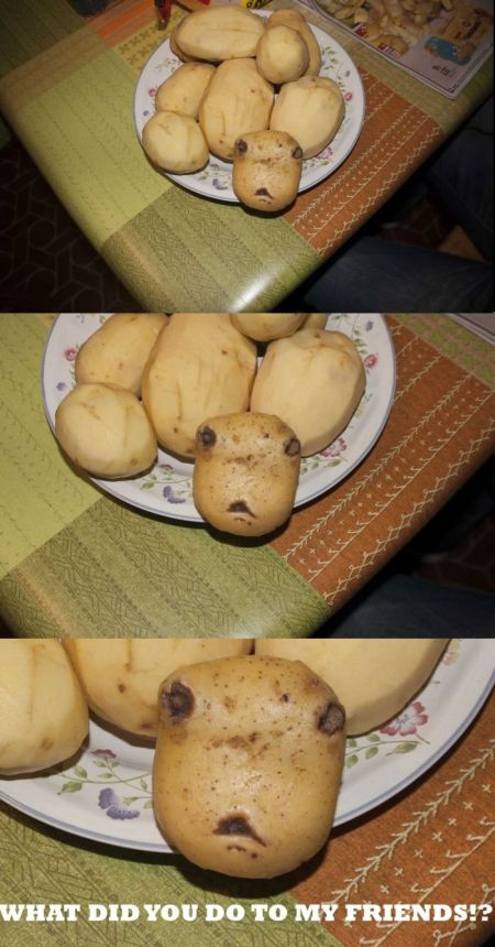 potato what did you do to my friends