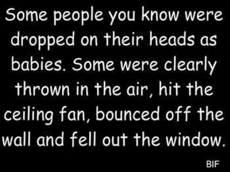 some people were dropped on their heads as babies funny quote
