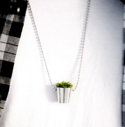 growing jewelry necklace