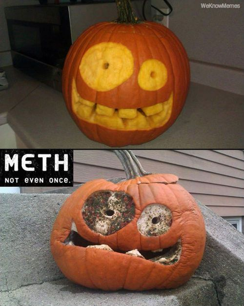 pumpkin on meth