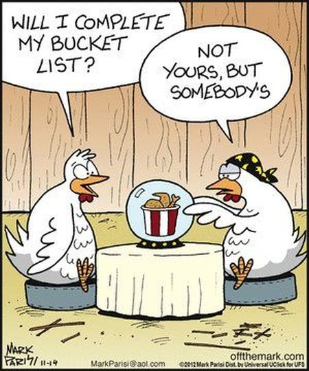 chicken bucket list funny cartoon