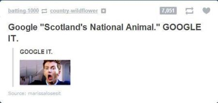 scotlands national animal