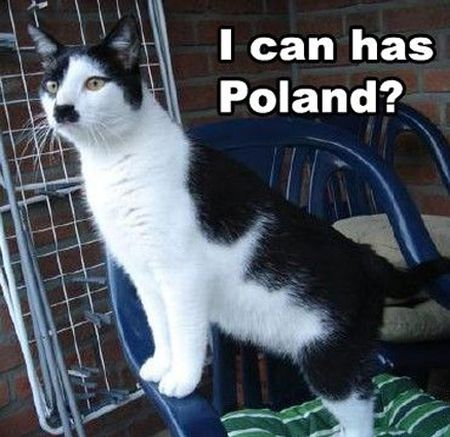 I can has Poland Hitler cat