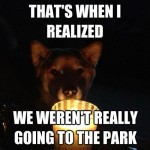 funny ghost story dog when I realized we weren't going to the park
