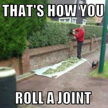 that's how you roll a joint meme