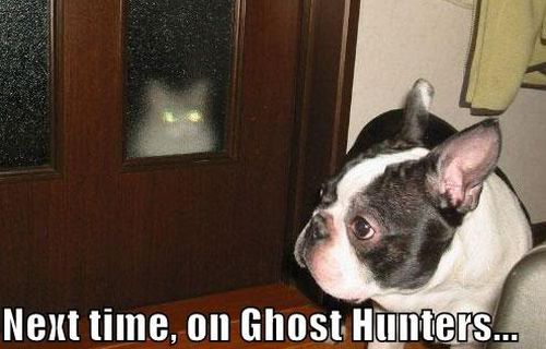 next time on ghost hunters meme